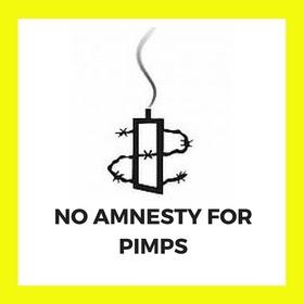 Amnesty International or Impunity International?